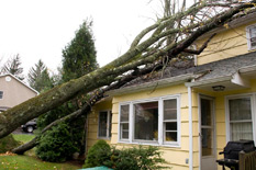 Do You Need Emergency Home Repairs in Anne Arundel County?